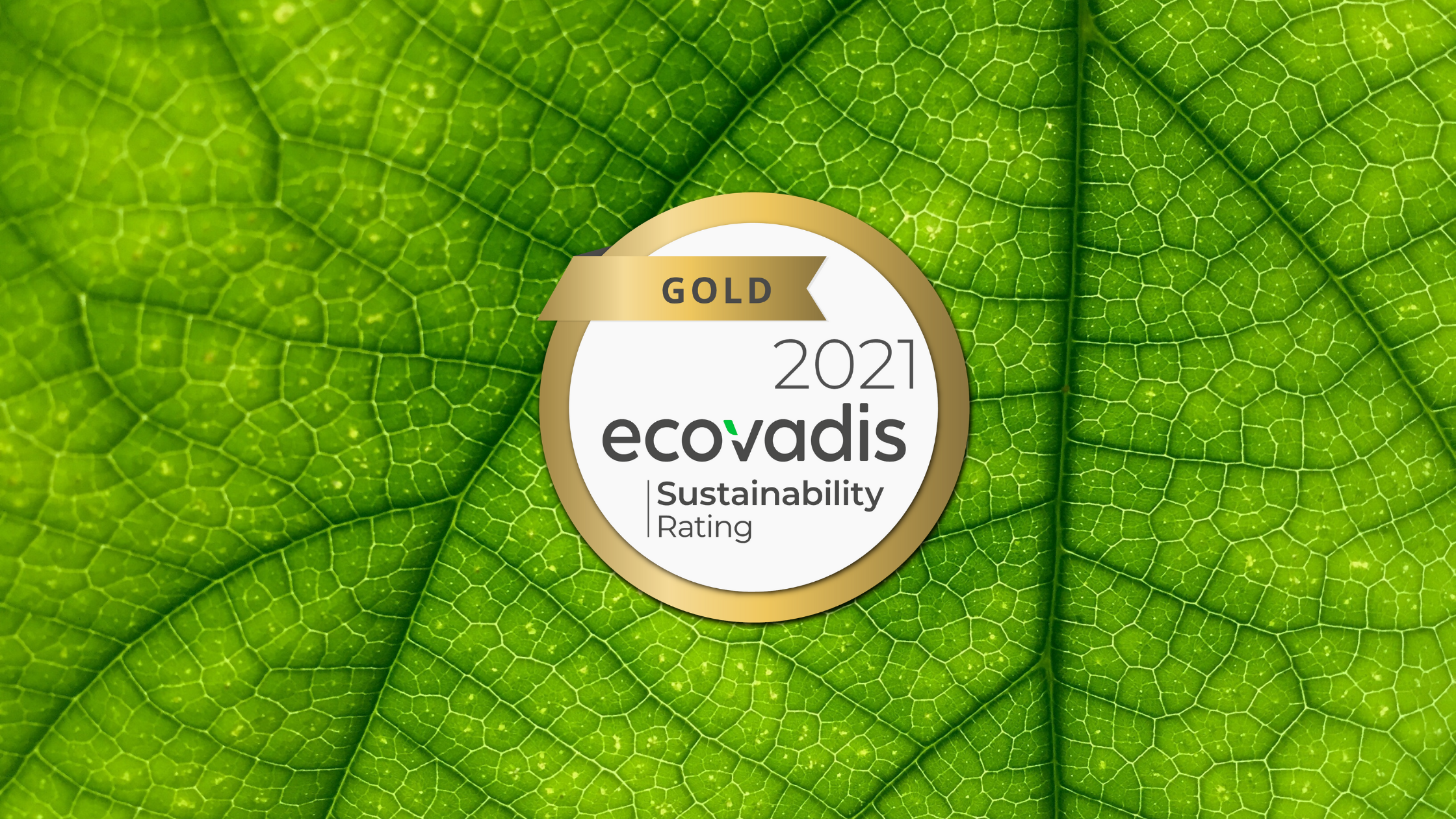 ASL Global receives Gold Status for the fifth time from EcoVadis